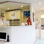 【2018年】さいたま市で評判のいい歯医者さん♪口コミでおすすめ6医院